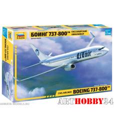 7019 Боинг 737-800
