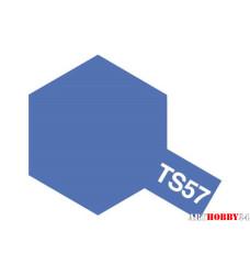 85057 TS-57 Blue Violet (сине-фиолетовый) спрей 100 мл