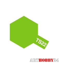 85022 TS-22 Light Green